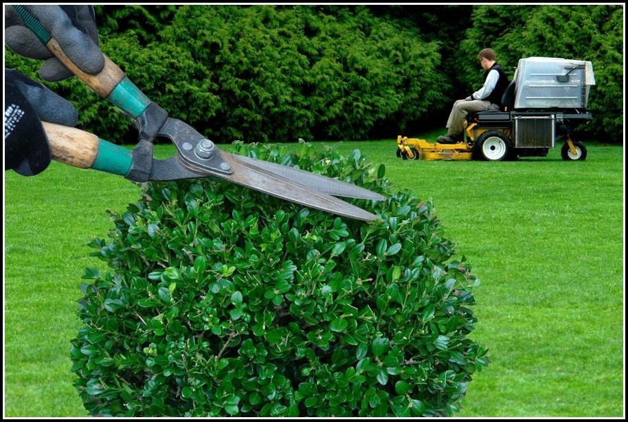 Garten Landschaftsbau Ausbildung Gehalt