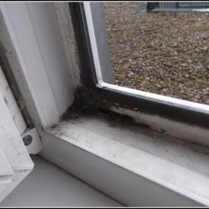 Schimmel Im Schlafzimmer Am Fenster