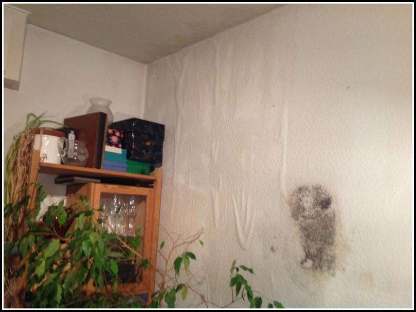 schimmel im wohnzimmer gesundheit wohnzimmer house und dekor galerie qokbng9koe