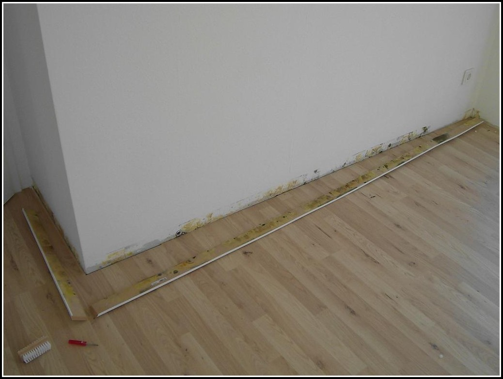 Schimmel Im Wohnzimmer Miete Kürzen