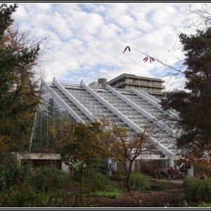 Botanischer Garten Bochum Hunde
