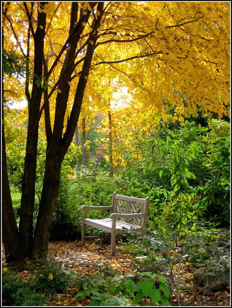 Garten Und Ambiente Hannover