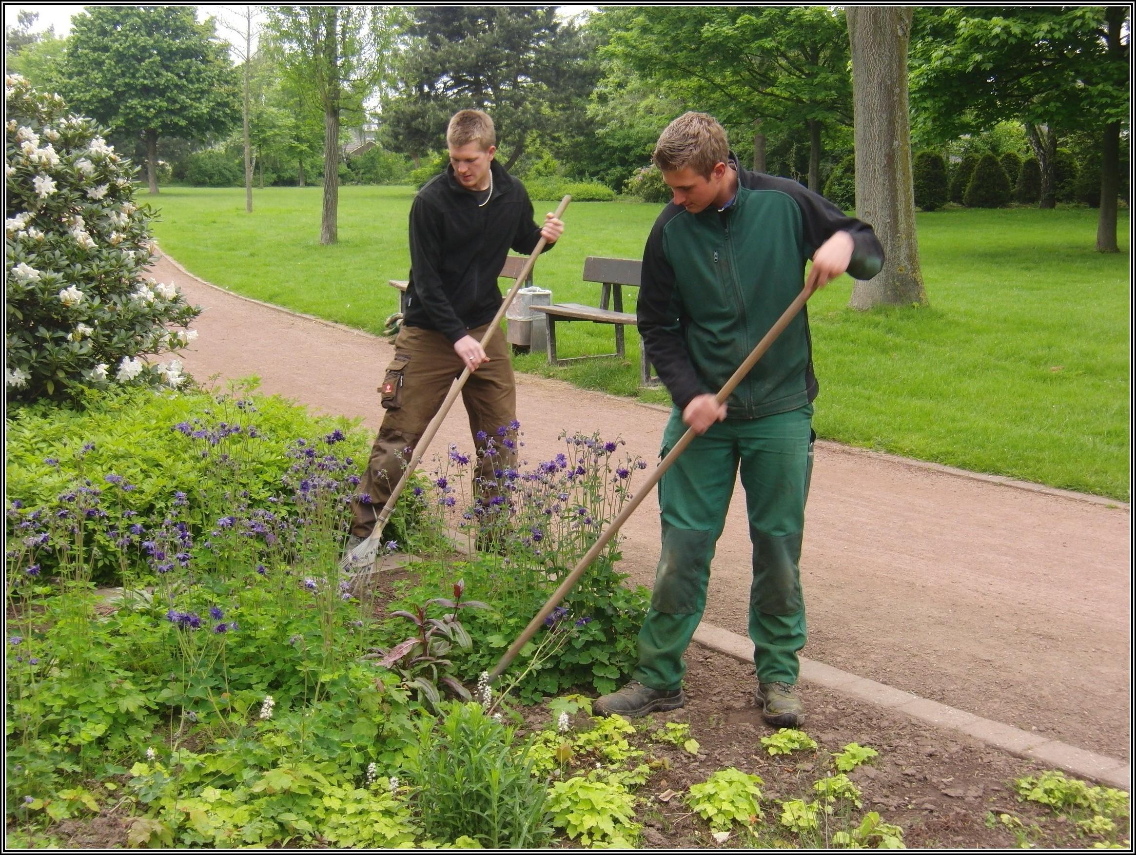 Studium Garten Und Landschaftsbau