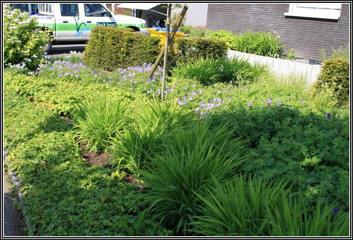 Garten Und Landschaftsbau Welche Bg