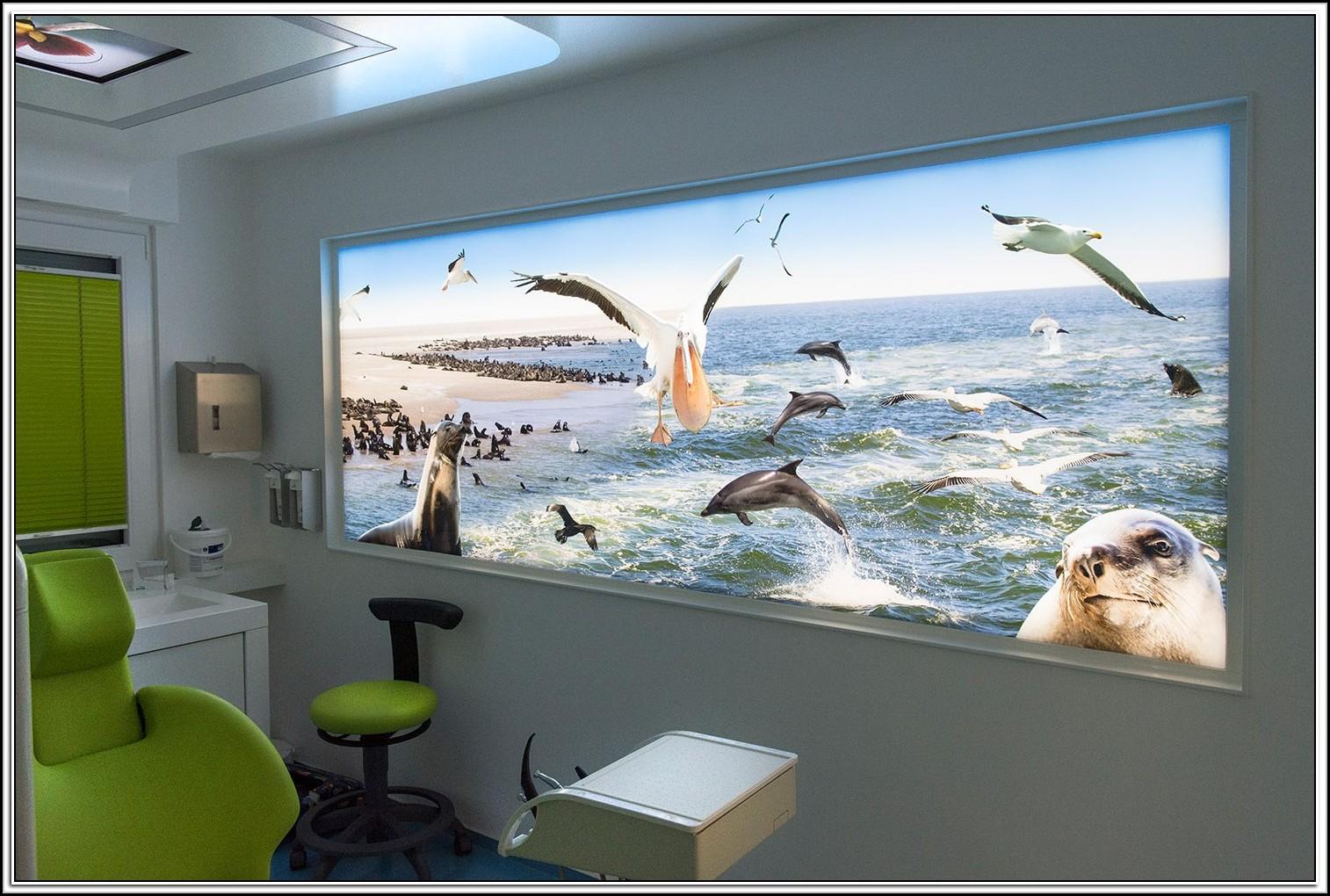 glasbilder mit beleuchtung beleuchthung house und dekor galerie pbw4av51x9. Black Bedroom Furniture Sets. Home Design Ideas
