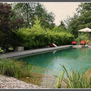 Garten und landschaftsbau braunschweig - Gartengestaltung braunschweig ...