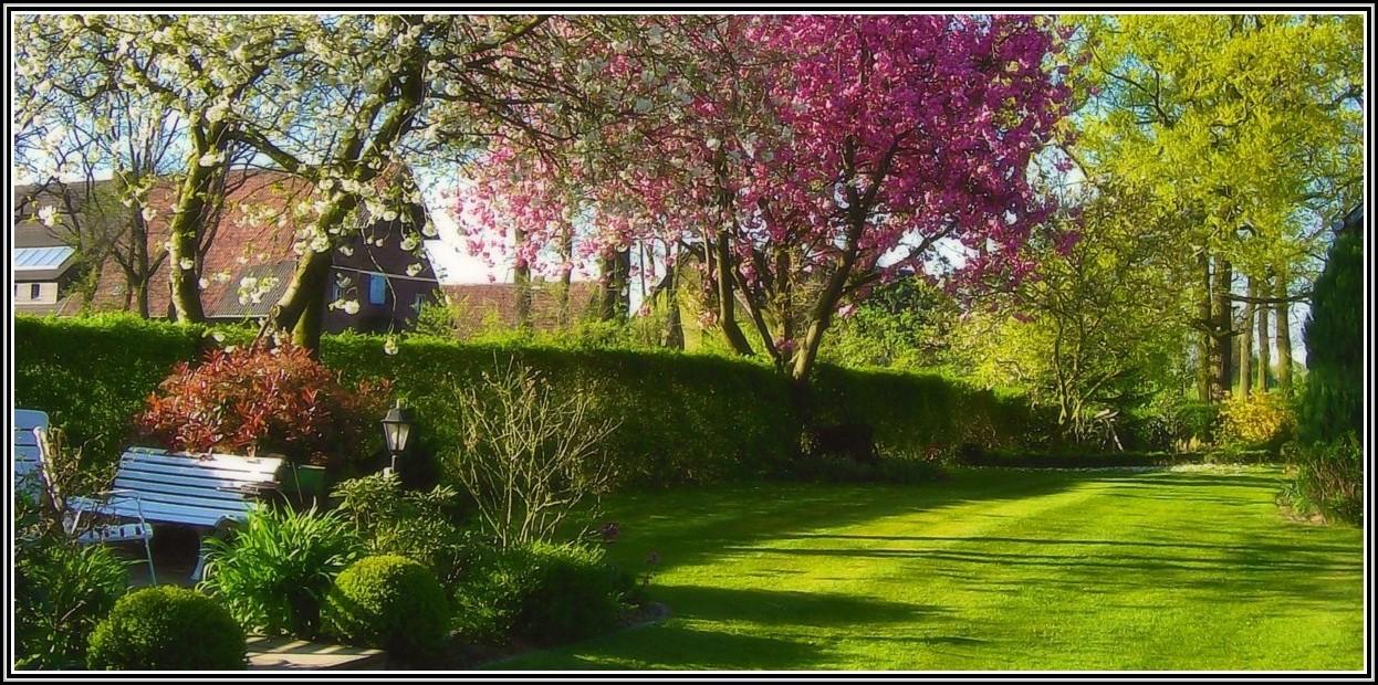 Welling Garten Und Landschaftsbau Recklinghausen