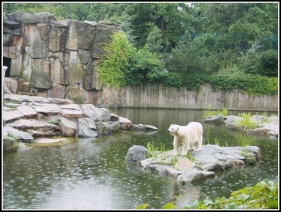 Zoo Garten Berlin
