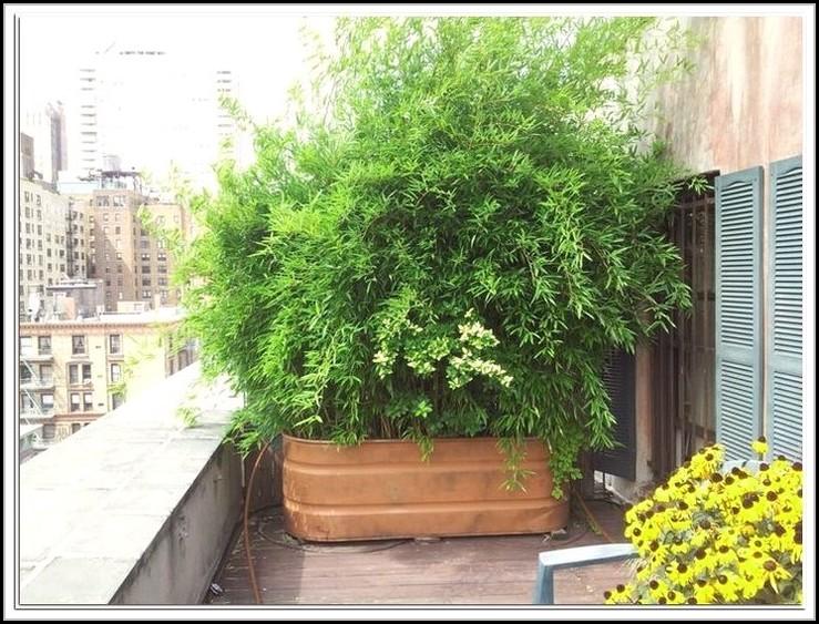 balkon sichtschutz bambus amazon balkon house und dekor galerie jlw8v3nreq. Black Bedroom Furniture Sets. Home Design Ideas