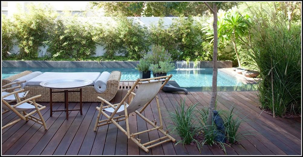 Bambus Auf Balkon Pflanzen