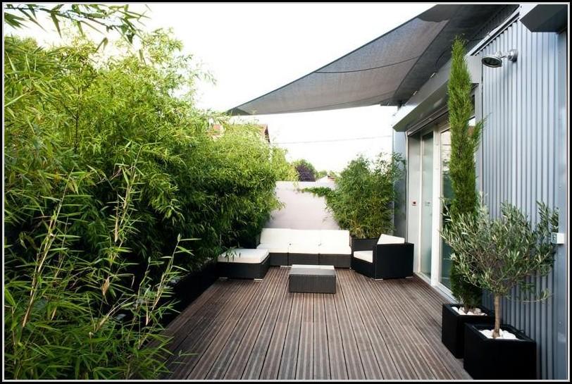 bambus pflanzen sichtschutz balkon balkon house und dekor galerie pbw4zz5rx9. Black Bedroom Furniture Sets. Home Design Ideas