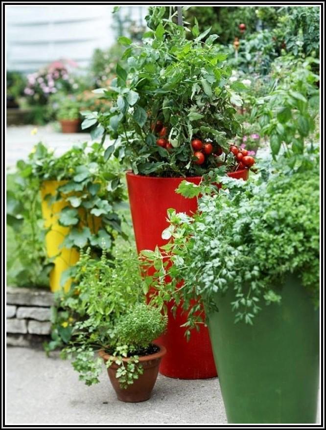 erdbeeren pflanzen auf dem balkon balkon house und dekor galerie qokbgk0woe. Black Bedroom Furniture Sets. Home Design Ideas