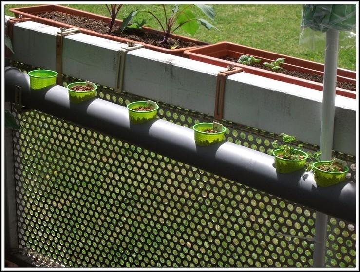 erdbeeren pflanzen balkon anleitung balkon house und dekor galerie re1l2emk2p