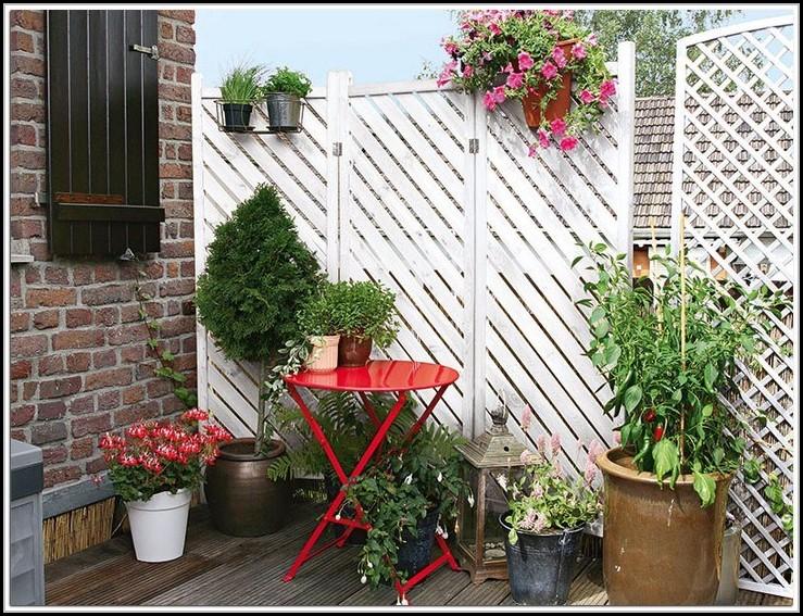 Sichtschutz Balkon Pflanzen Winterhart Download Page Beste
