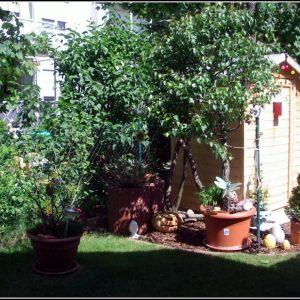 Kleine Gartenhaus Holzhaus