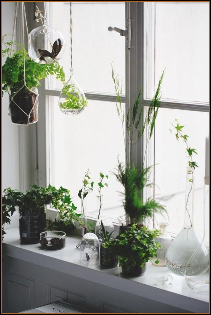 Küchen Deko Grün