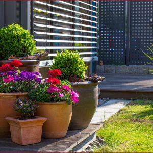 Ideen Für Terrassenbepflanzung