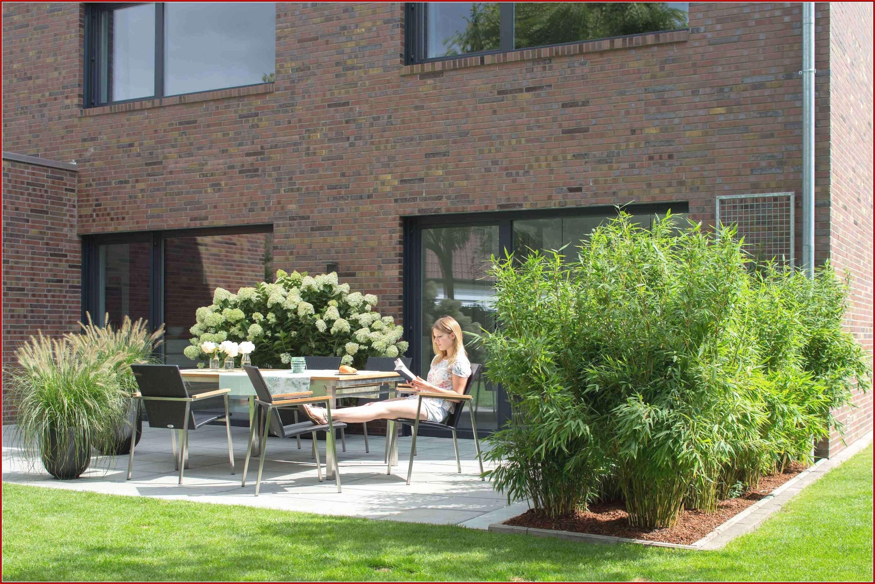 Ideen Terrasse Pflanzen