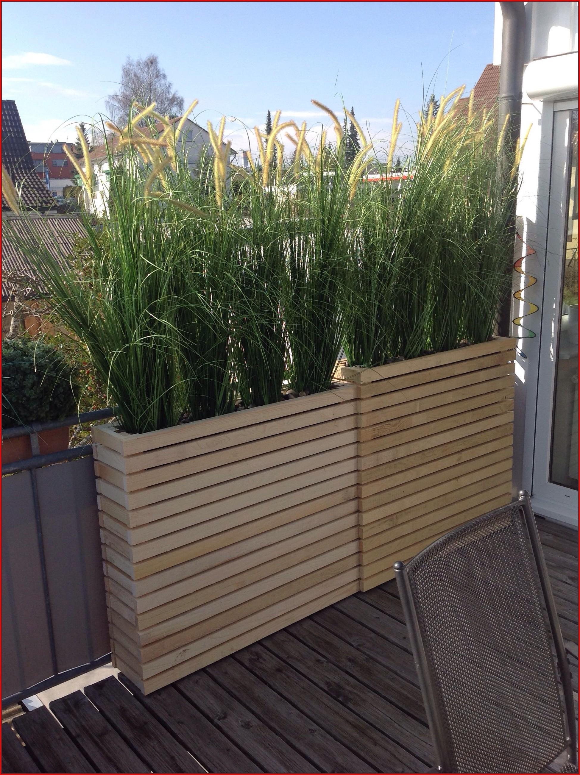 Sichtschutz Ideen Für Die Terrasse