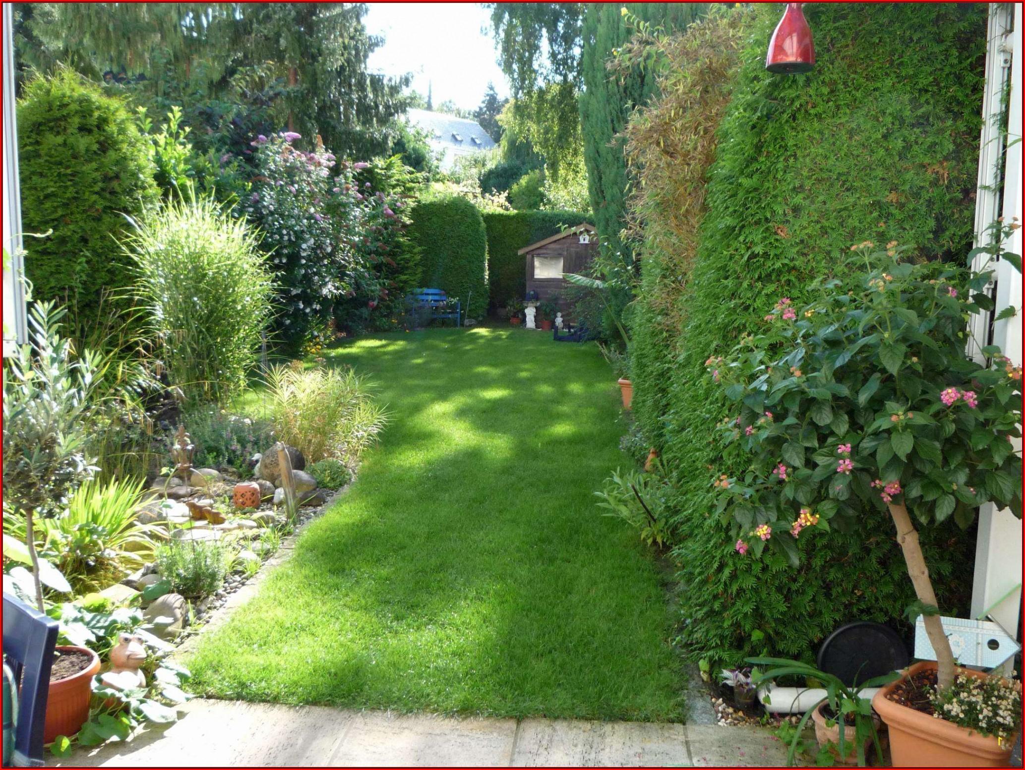 Terrasse Bepflanzen Ideen