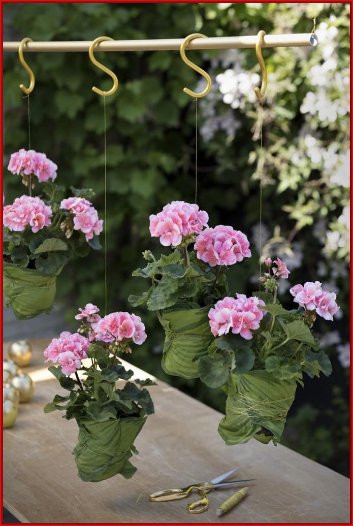 Terrasse Blumen Ideen