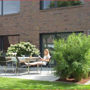 Terrasse Pflanzen Ideen