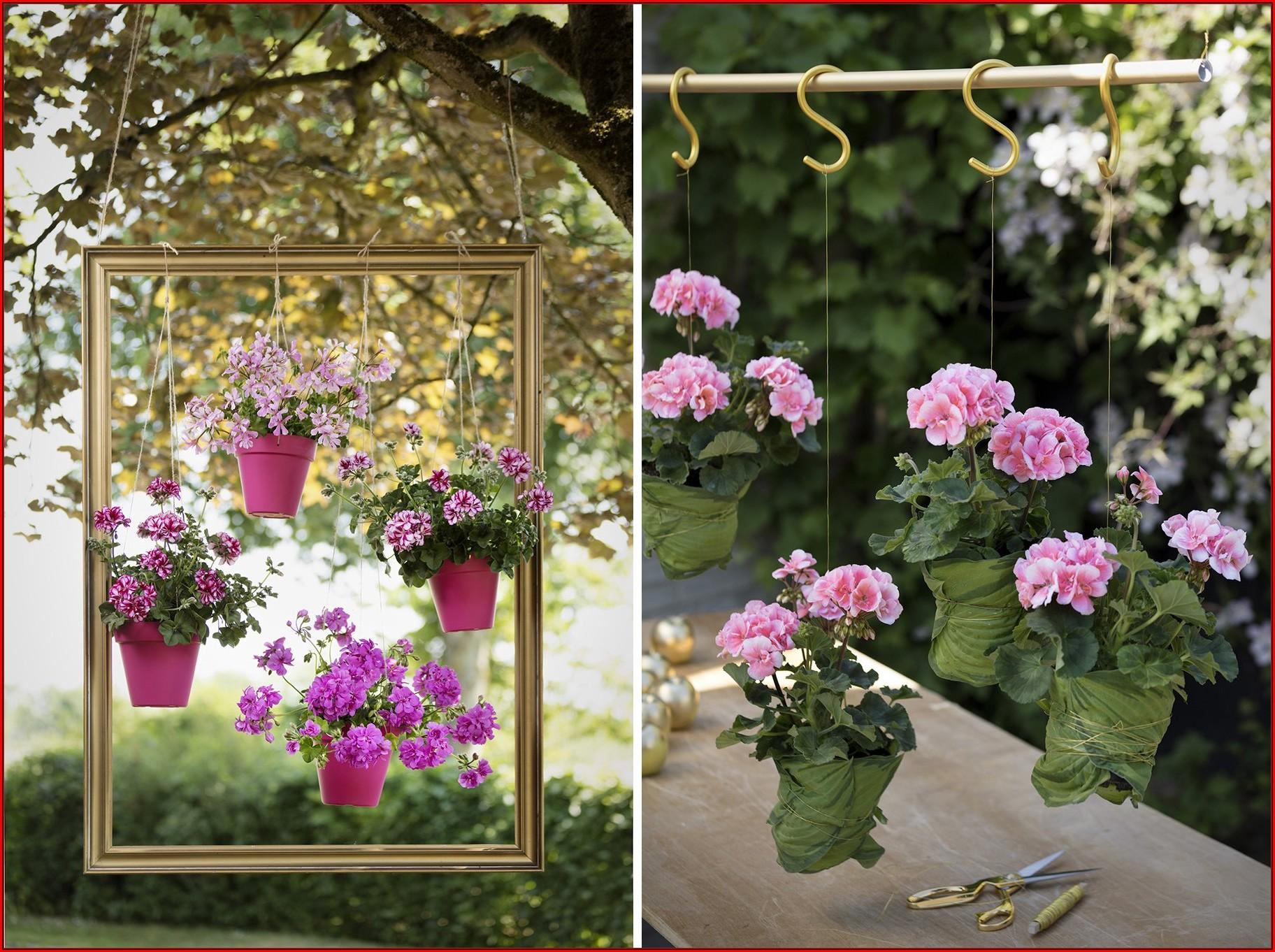 Terrassen Ideen Blumen