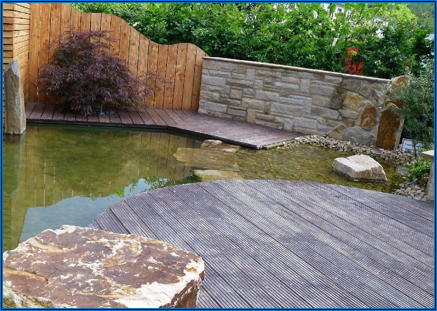 Kleiner Teich An Terrasse