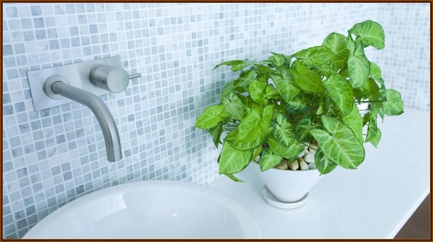 Welche Bilder Sind Für Badezimmer Geeignet
