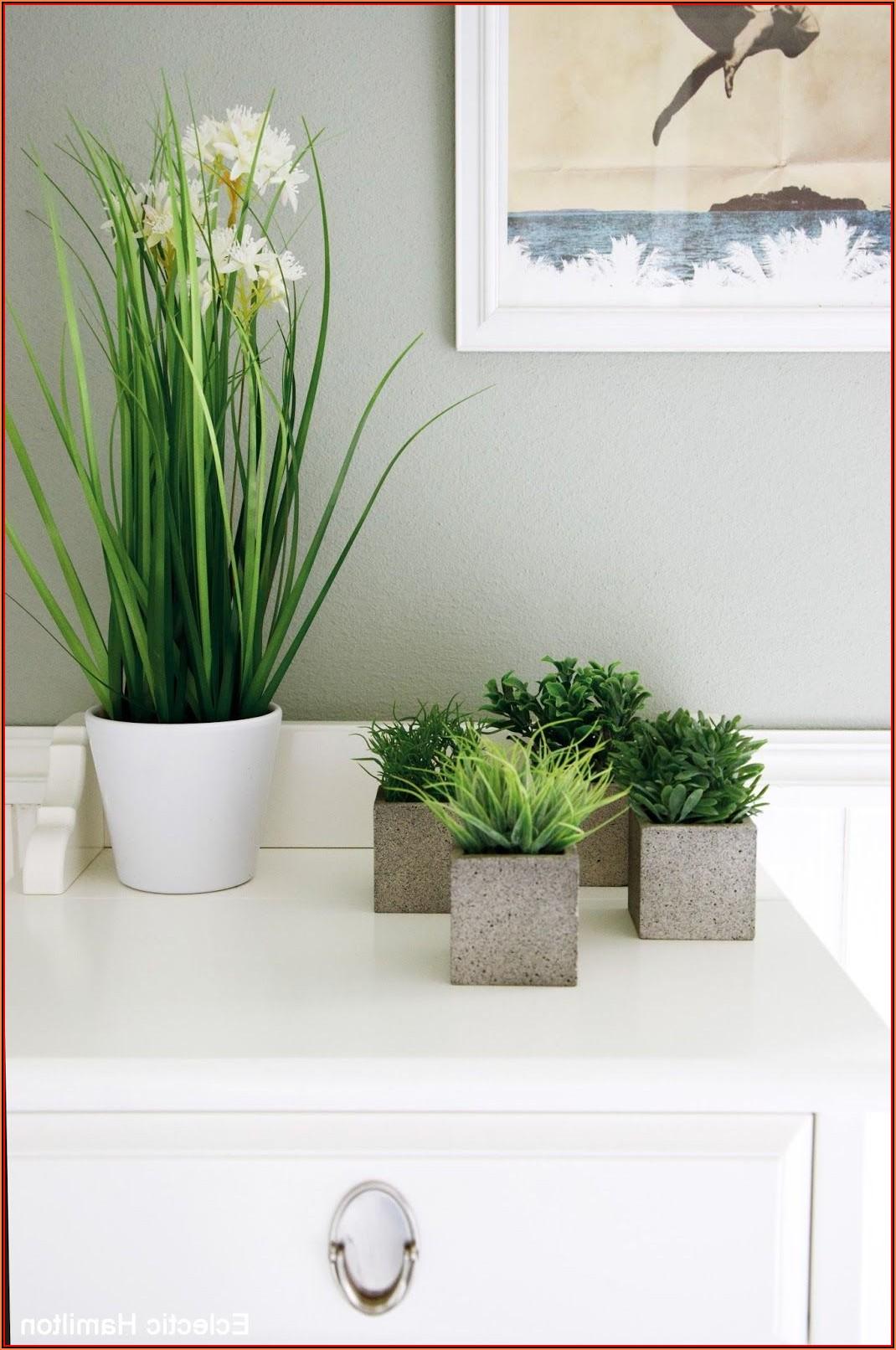 Badezimmer Dekorieren Mit Pflanzen