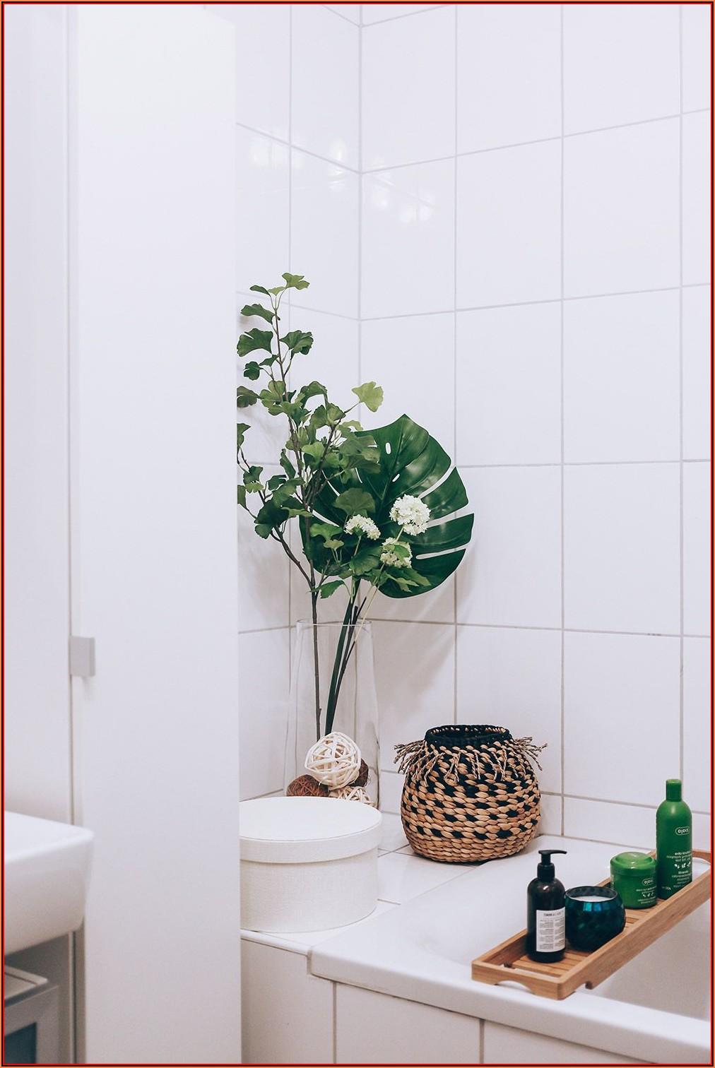 Dekoration Für Badezimmer Fenster