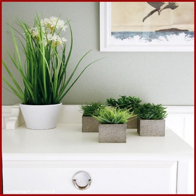 Deko Badezimmer Pflanzen