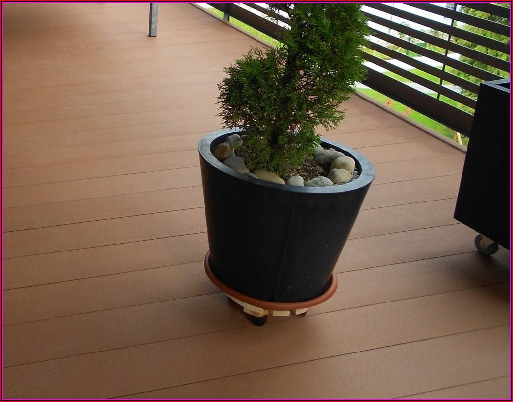 Wpc Terrassen Bilder