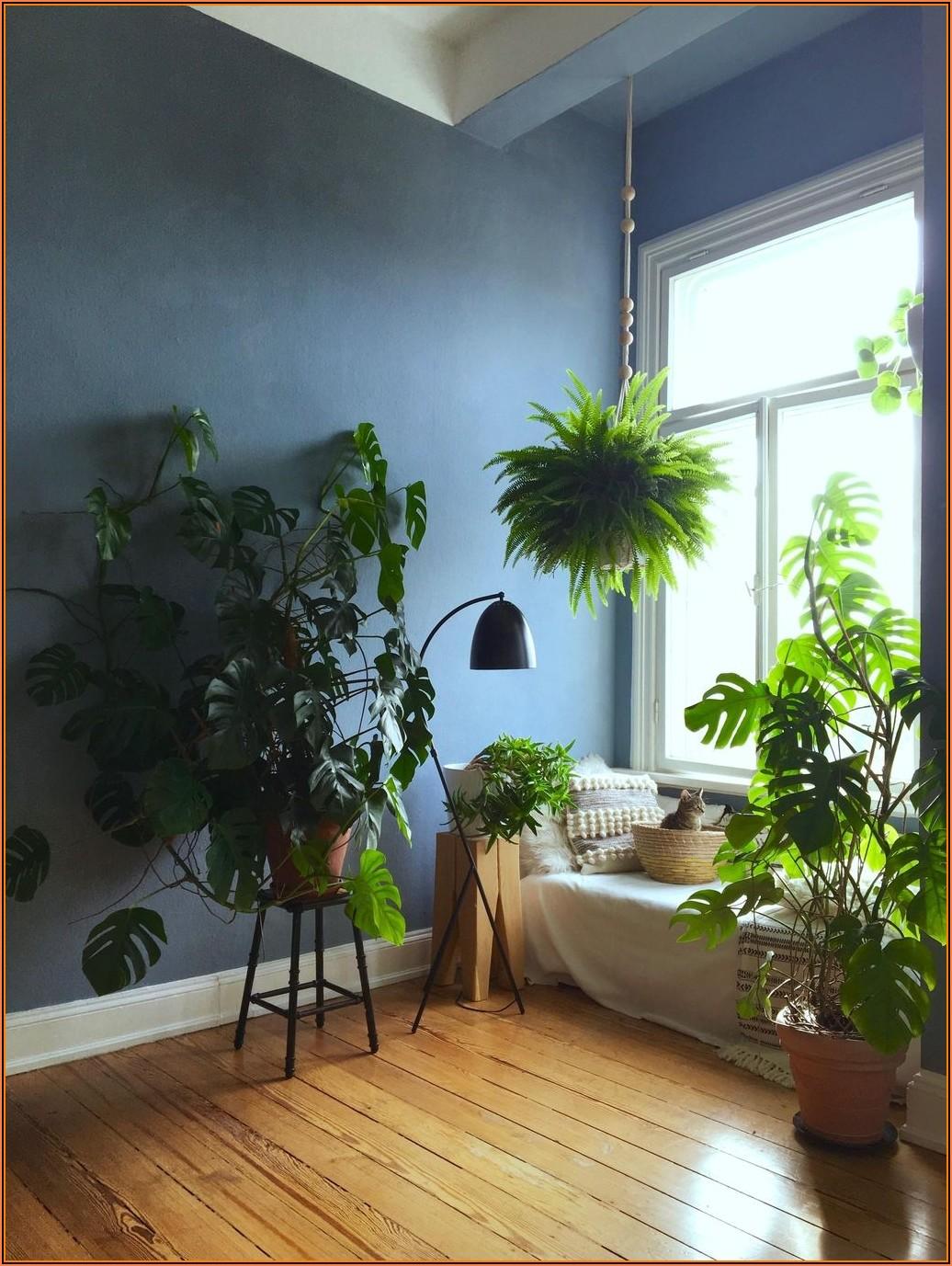 Altbauwohnung Wohnzimmer Ideen