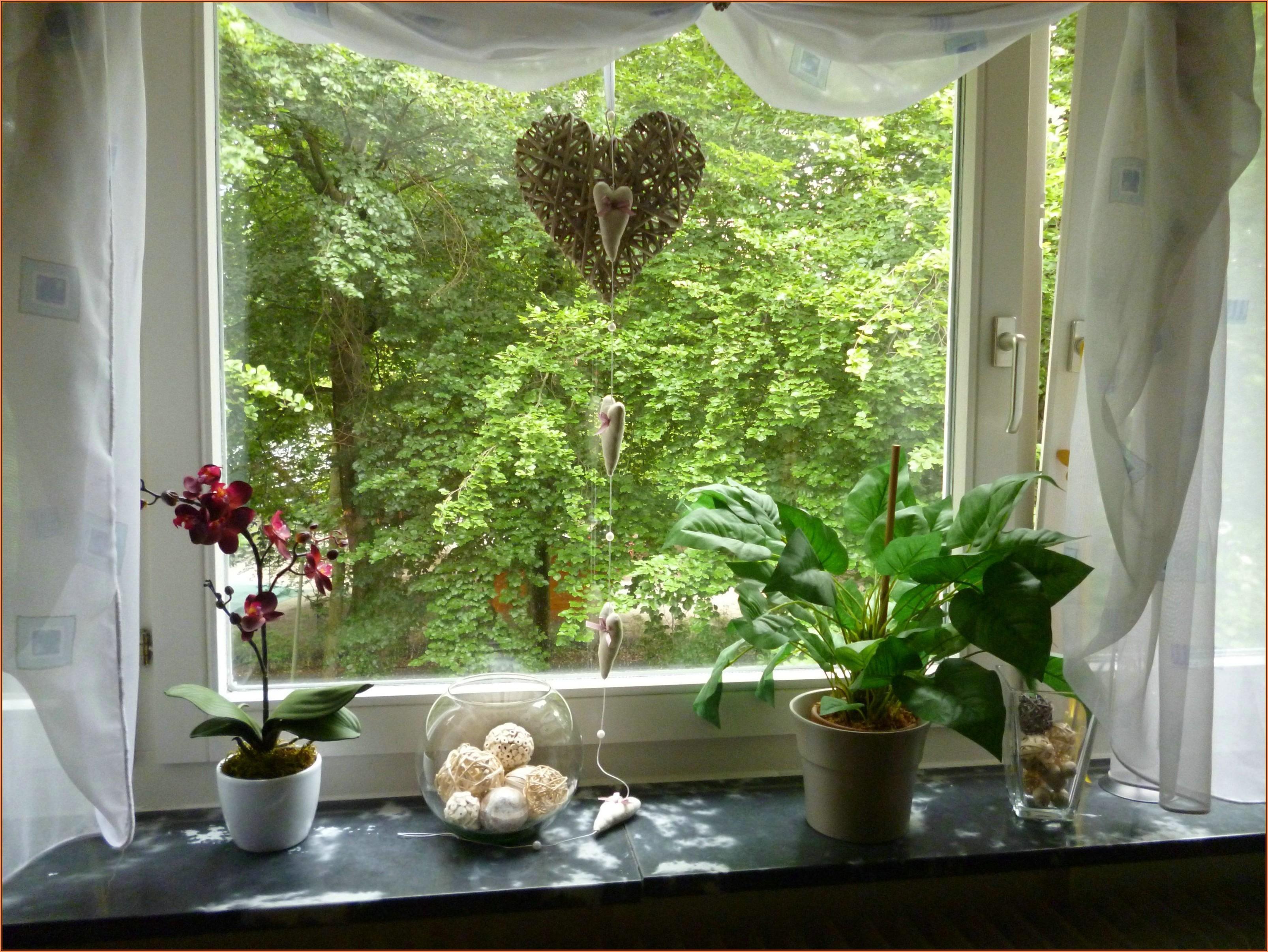 Fenster Deko Wohnzimmer
