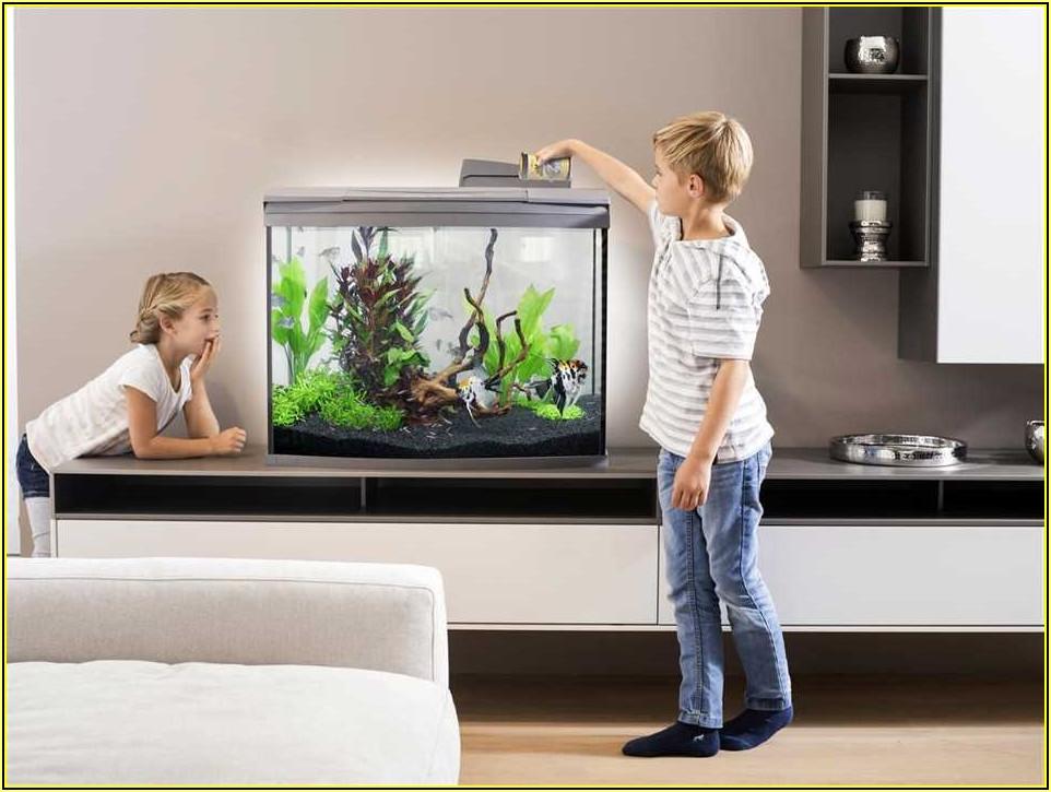 Kleines Aquarium Für Kinderzimmer