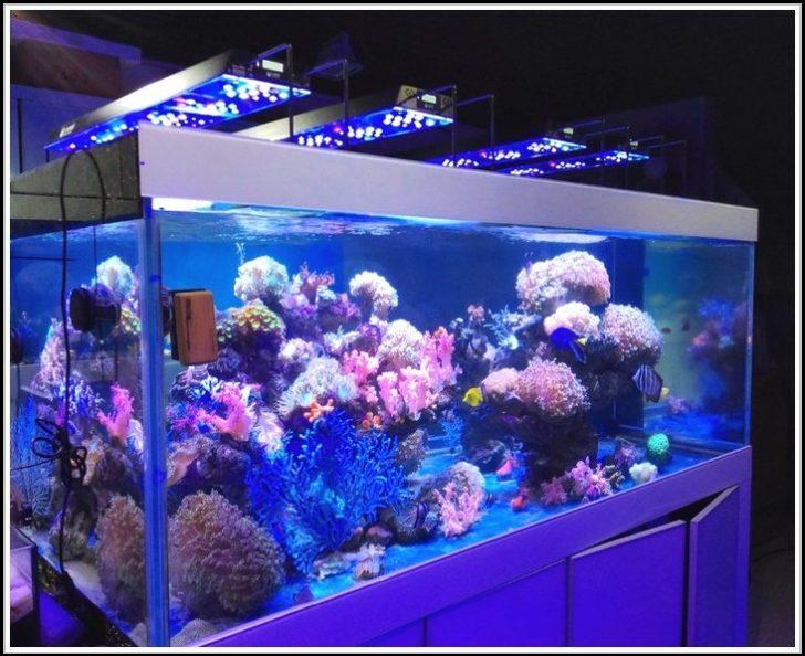 Permalink to Aquarium Led Beleuchtung Selber Bauen 2014