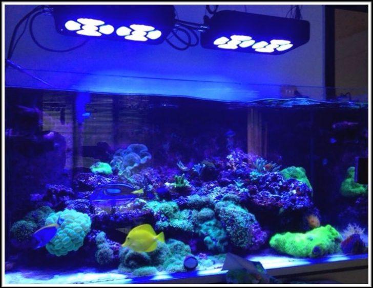 Permalink to Aquarium Led Beleuchtung Selber Machen