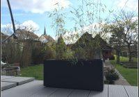 Bambus Als Sichtschutz Balkon