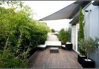 Bambus Pflanzen Sichtschutz Balkon
