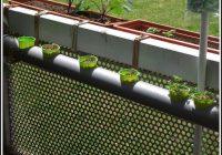 Erdbeeren Pflanzen Balkon Anleitung