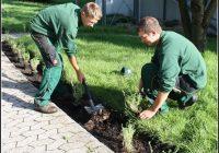 Garten Und Landschaftsbau Ausbildung