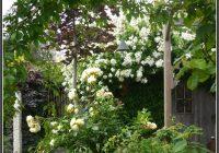 Garten Und Landschaftsbau Bremerhaven