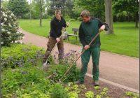 Garten Und Landschaftsbau Studium
