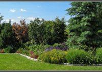 Gartenbepflanzung Sichtschutz