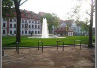 Gle Garten Und Landschaftsbau Erfurt