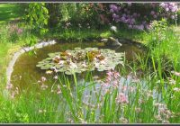 Insekten Im Garten Ansiedeln