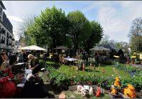 Kunst Und Gartenmarkt Bad Nauheim