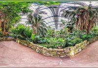 Palmengarten Botanischer Garten Frankfurt