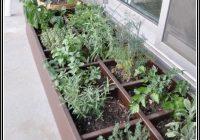 Pflanzen Auf Dem Balkon Erlaubt